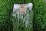 Sweet Pea Urban Gardens Living Wheat Grass 8oz. bag of CUT WHEATGRASS